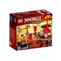 Lego Ninjago Entrenamiento en el Monasterio