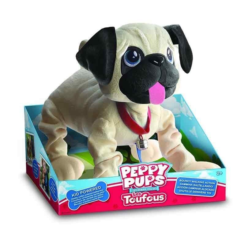 Peppy Pup Carlino