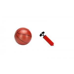 Estructura de Baloncesto