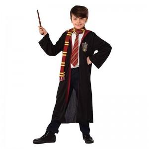 Disfraz de Harry Potter