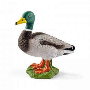 Schleich Farm World Pato